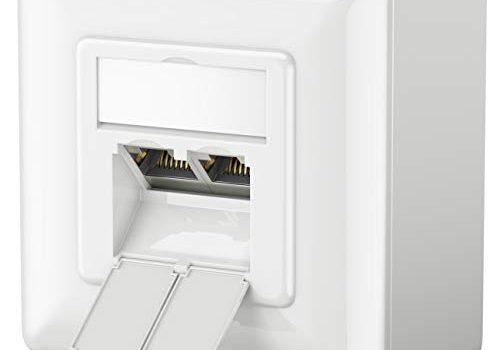 Weiß – 10 Gigabit Ethernet Netzwerk – EIA/TIA 568A&B – Aufputz oder Unterputz – 2X RJ45 Port – deleyCON 1x CAT6a Universal Netzwerkdose – Geschirmt