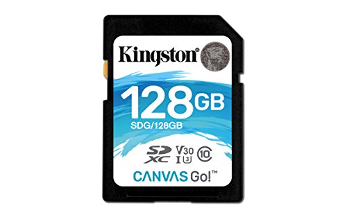 Kingston Canvas Go SDG 128GB Class 10 Speicherkarte
