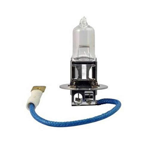 Top 8 Glühbirne H3 12V 55W – Halogenlampen