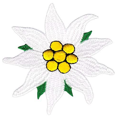 Top 10 Patches zum Aufnähen Blumen – Applikationen